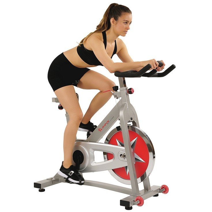 Best Spin Bikes - Sunny Health and Fitness Pro