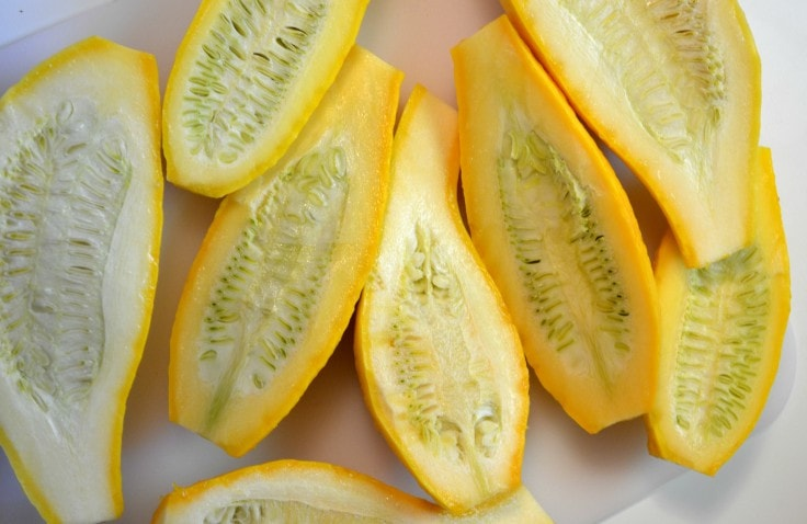 Summery Weight Loss Foods - Summer Squash