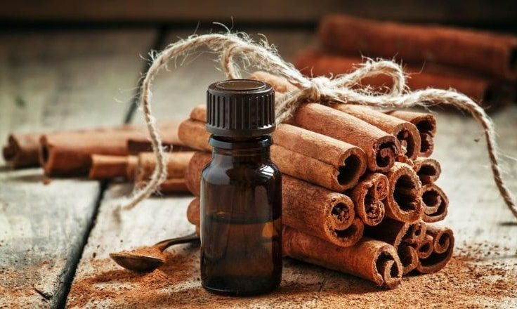 Cinnamon Bark Essential Oil To Treat Adrenal Fatigue