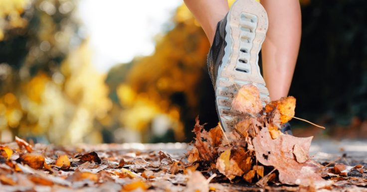 How To Stay Active During The Fall Season