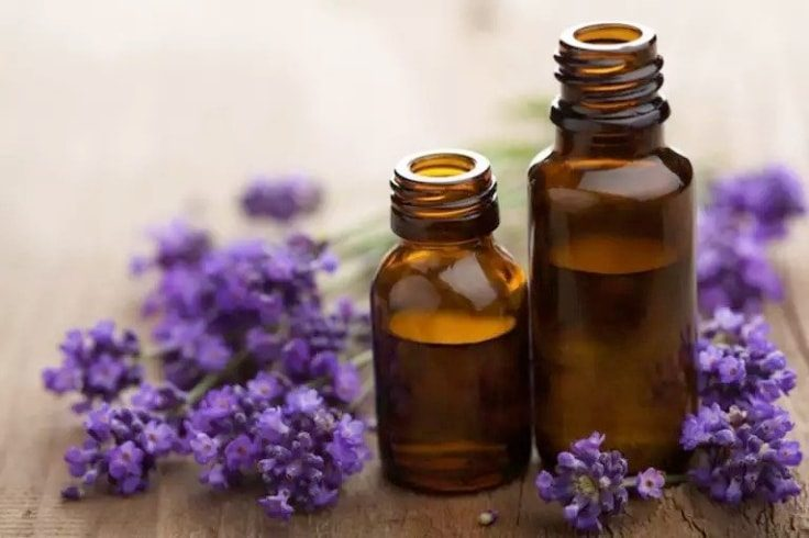 Lavender Essential Oil To Treat Adrenal Fatigue