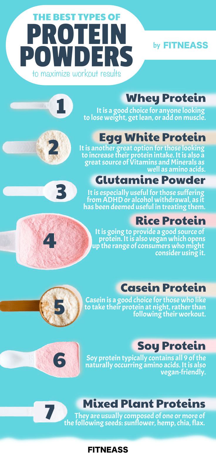 The Best Types Of Protein Powder To Maximize Workout Results - Infographic
