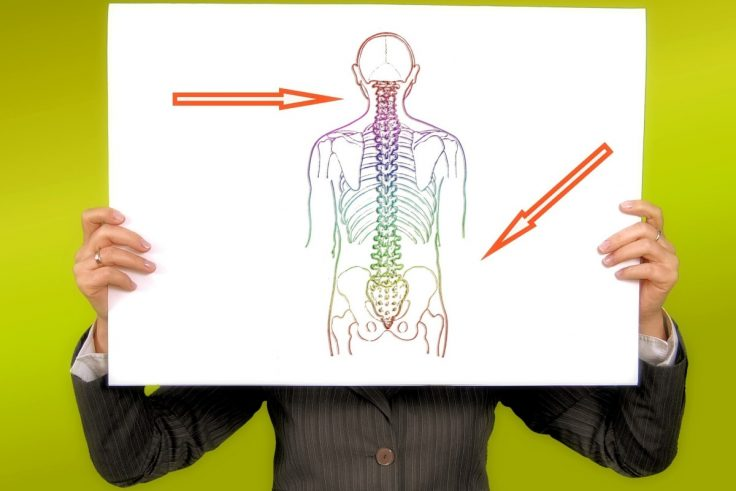 7 Tips In Looking For The Right Chiropractor For You