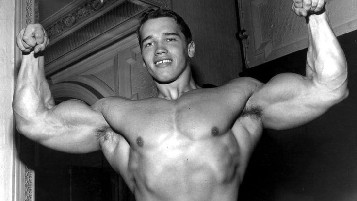 Famous Bodybuilders Who Used Steroids - Arnold Schwarzenegger