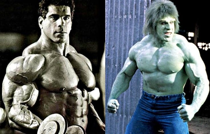 Famous Bodybuilders Who Used Steroids - Lou Ferrigno
