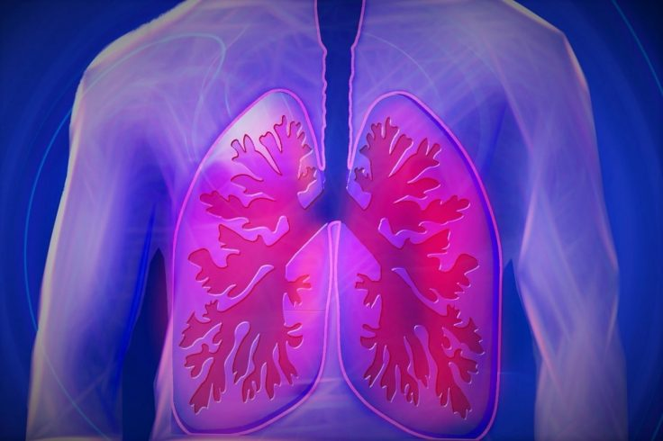How To Keep Lungs Healthy