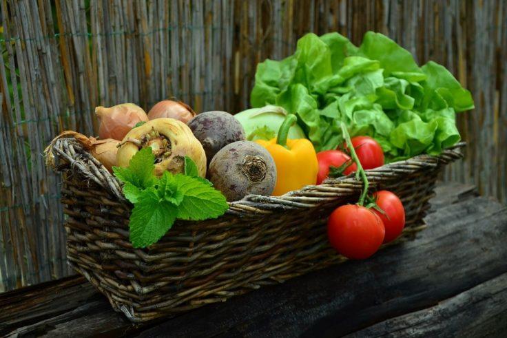 Reasons To Eat Organic Food