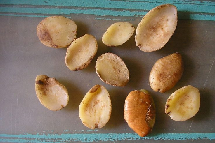Health Benefits Of Irvingia Gabonensis