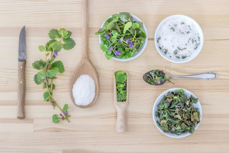 The Powerful Benefits Of Herbal Medicine
