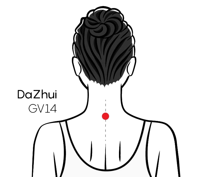 Acupressure Point GV14