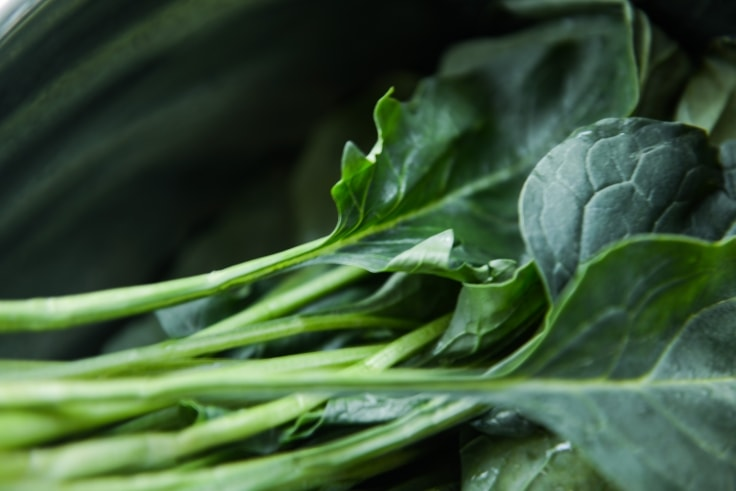 Collard is one of the healthiest dark leafy greens