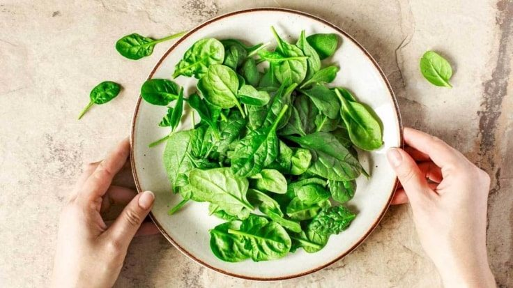 Foods To Promote Weight Loss - Spinach