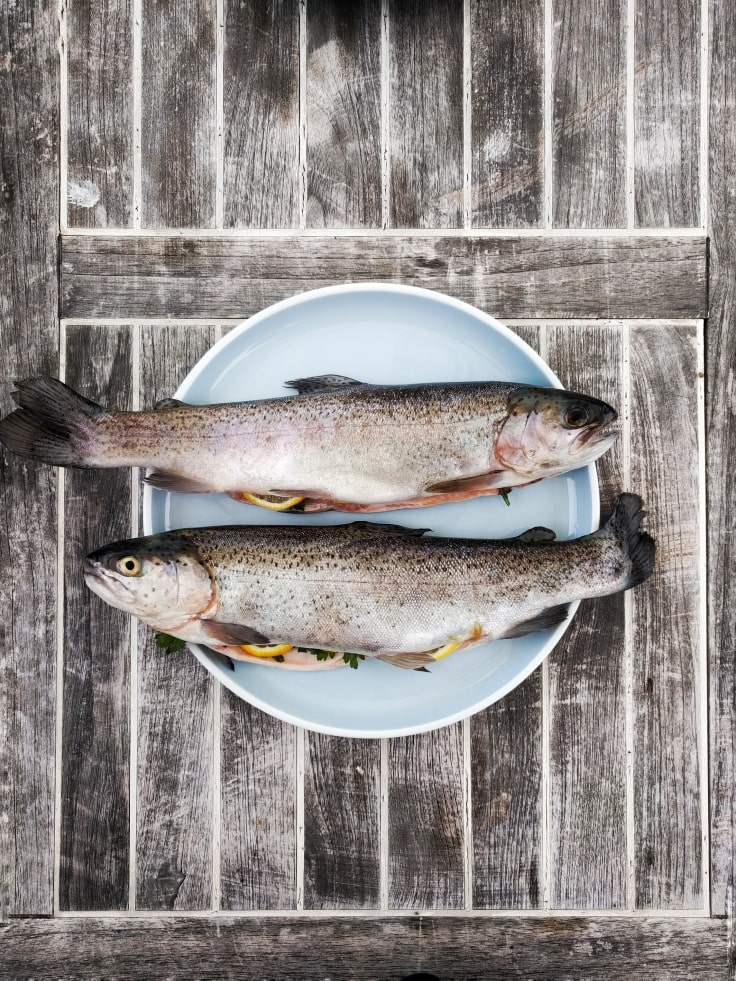 Belly Fat Burning Foods - Fish