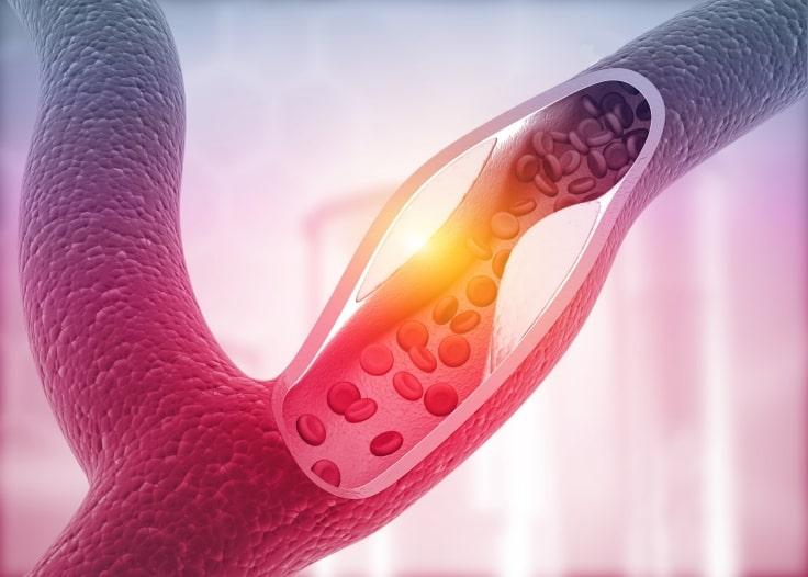 Shilajit Benefits For Men - Encourage Optimum Heart Health