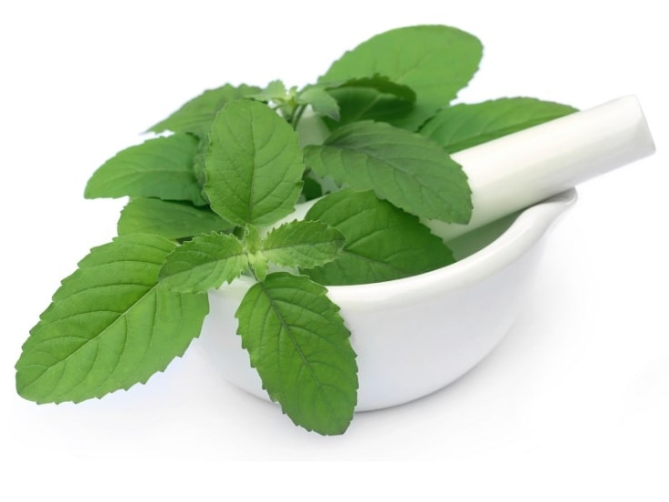Crush Mint Leaves And Apply The Paste Under Your Eyes