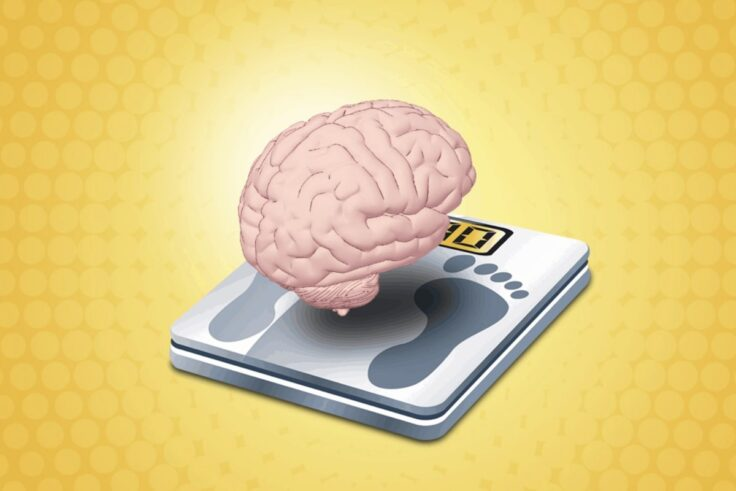 The Best Nootropics For Losing Weight