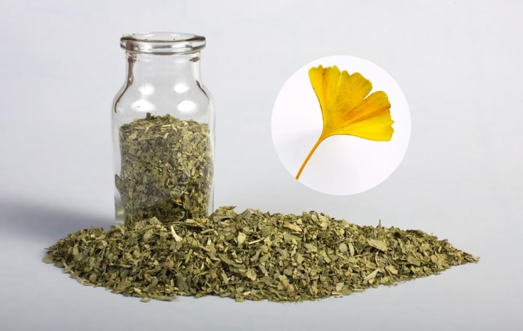 Natural Plant Remedies - Crushed Leaves Of Ginkgo