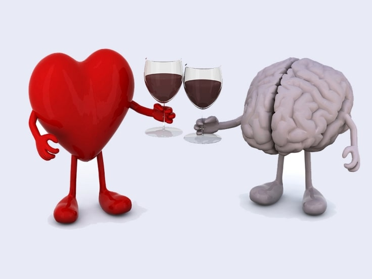 Moderate Alcohol Consumption Can Be Good For Your Health And Brain