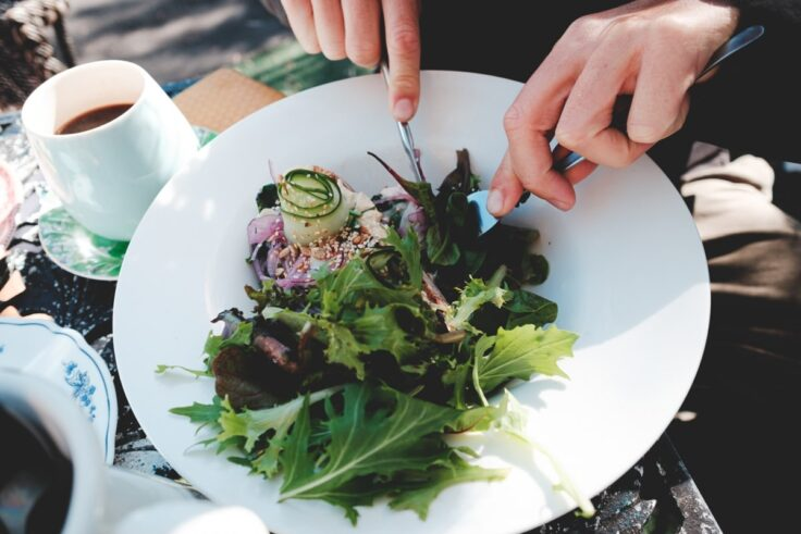 The Benefits Of Turning To A Plant-Based Diet