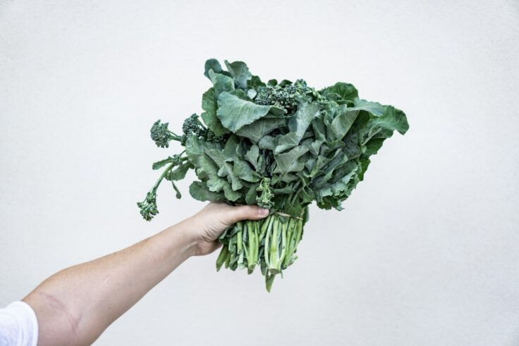 Add Kale To Your Plate Right Now