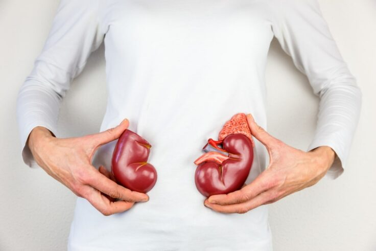 5 Simple Steps To Follow For Healthy Kidneys
