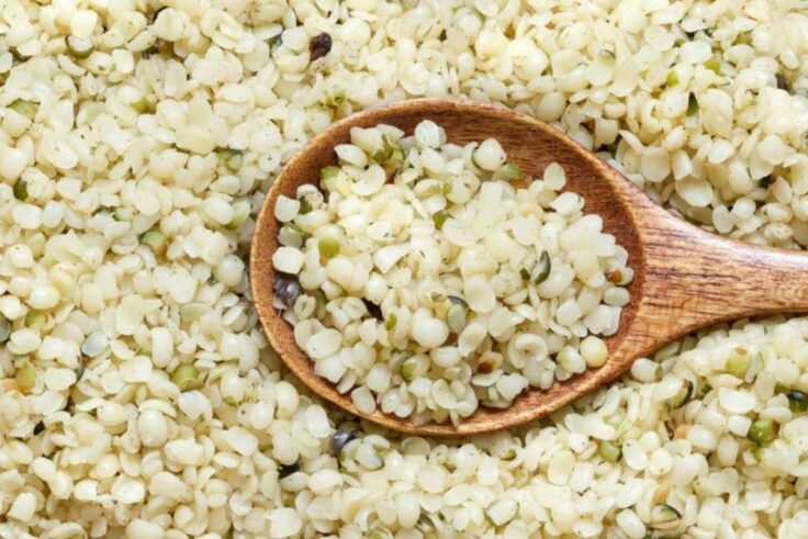 Protein Sources For Vegans - Hempseed