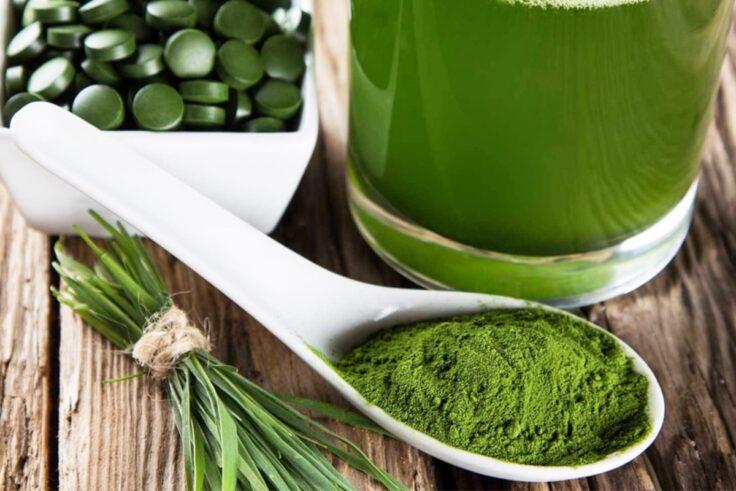 Protein Sources For Vegans - Spirulina