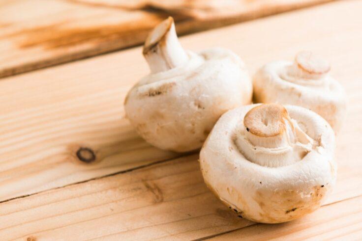 Mushrooms last 10 days at room temperature